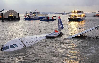 美客机起飞时遭鸟撞迫降冰河