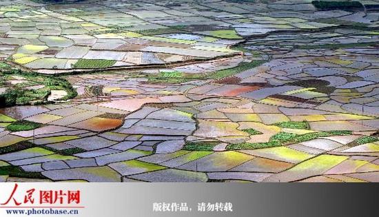 """广西瑶乡""""七彩田园""""美如画"""