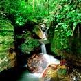 艾尔云克国家森林公园