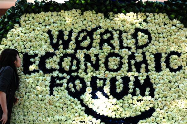 巨幅光影、6万朵鲜花迎达沃斯年视频(2)v光影花饰贵宾图片