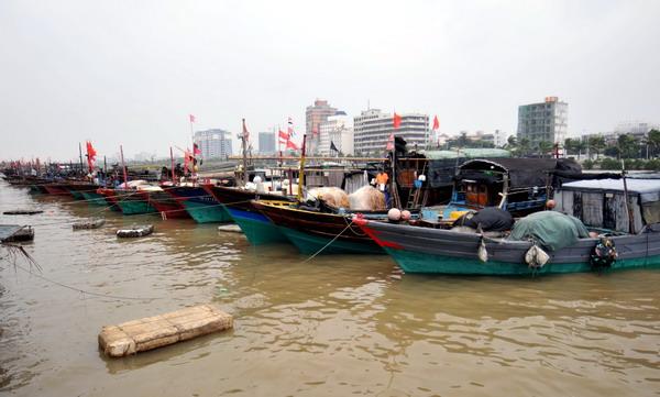 9月28日,渔船在海口市新港避风. 新华社记者 郭程 摄