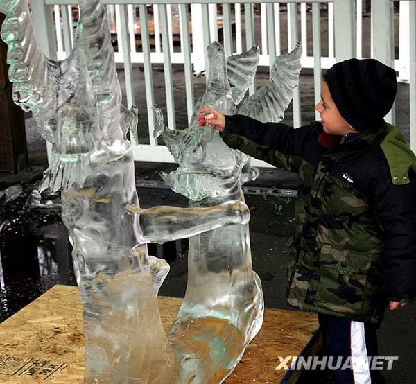 纽约布朗克斯动物园冰雕吸引游客