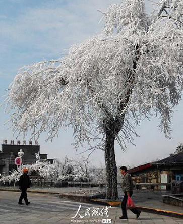 2010年3月9日 - 黔中人(田丰) - 黔中人