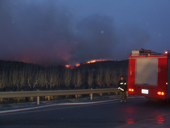 组图:大连长兴岛发生大面积山火